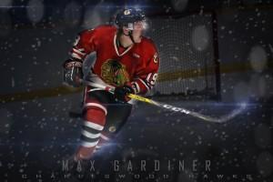 Gardiner Poster flare series 1
