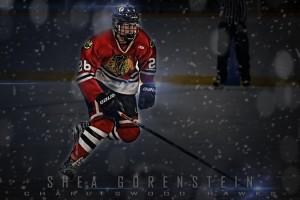 Gorenstein Poster flare series 1